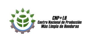 CNP+LH